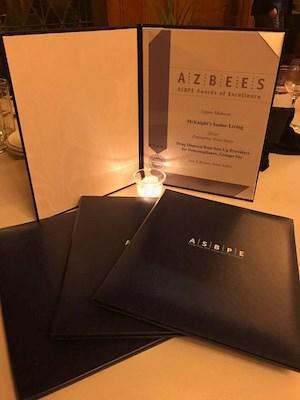 McKnight's Senior Living wins 4 regional ASBPE awards