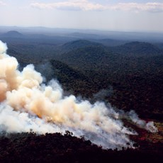 Wildfire evacuations at two communities spark investigation