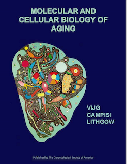 New book details aging process