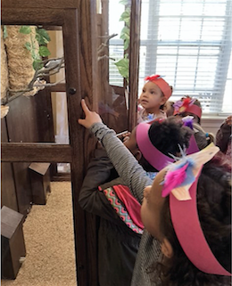 Children visit a Candle Light Cove aviary.