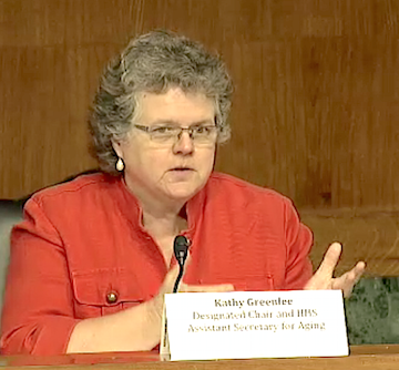 Kathy Greenlee speaks during the April 27 meeting of the Elder Justice Coordinating Council.