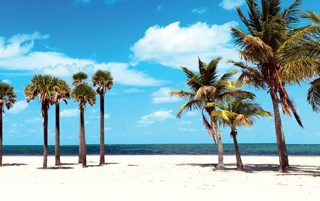 Warm winters, sandy beaches and sunshine make Florida an attractive destination. The Sunshine State recently passed New York in population.