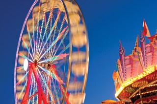 Planning an outing to the fair? Avoid the pigs