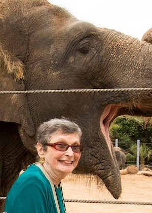 Brookdale Meridian Temple resident Jenny Bond makes friends with an elephant at the Houston Zoo.