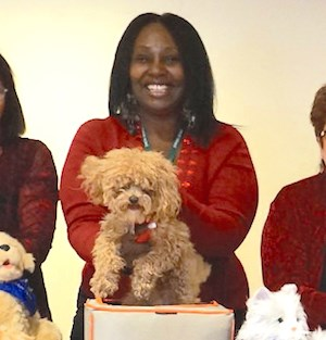 Bentley, a toy poodle owned by Activity Director Tracey Couliboly, won the Rockminster Dog Show.