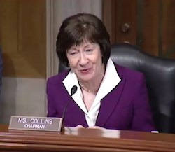 Sen. Susan Collins (R-ME) speaks at the March 21 Senate Special Committee on Aging hearing.
