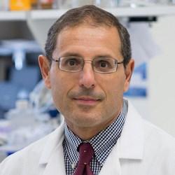 Domenico Praticò, M.D. (Photo: Lewis Katz School of Medicine at Temple University)