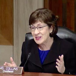 Sen. Susan Collins (R-ME) speaks about scams defrauding older adults at a Wednesday hearing of the Senate Special Committee on Aging. Collins is chairman of the body.