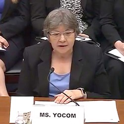 """Due to concerns about the adequacy of oversight, Medicaid has been on our list of high-risk programs since 2003,"" testified Carolyn L. Yocom, a healthcare director at the GAO."