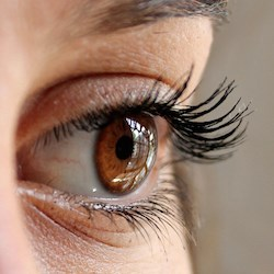 Protect vision to help protect cognition: study